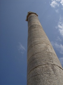 Storks nest on a reconstructed column at the Temple of Apollo at Didyma (Miletus). Photo by Alison Innes.